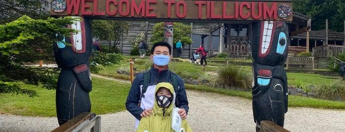 Tillicum Village is one of Attractions.