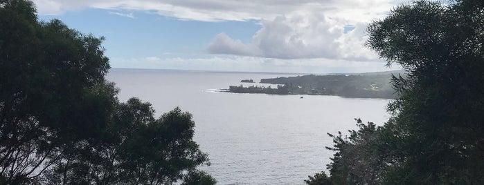 Waikamoi Ridge Trail is one of CBS Sunday Morning 2.