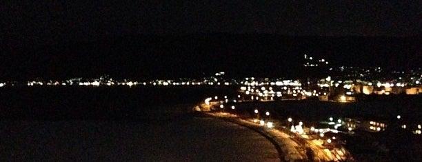 諏訪湖SA (上り) is one of 日本夜景遺産.