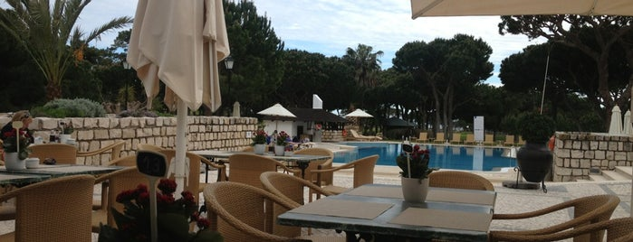 Jardim Gourmet is one of Tempat yang Disukai MENU.