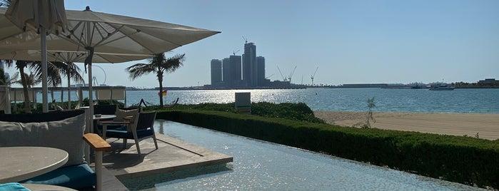 Drift is one of Mama in Dubai 🦁.