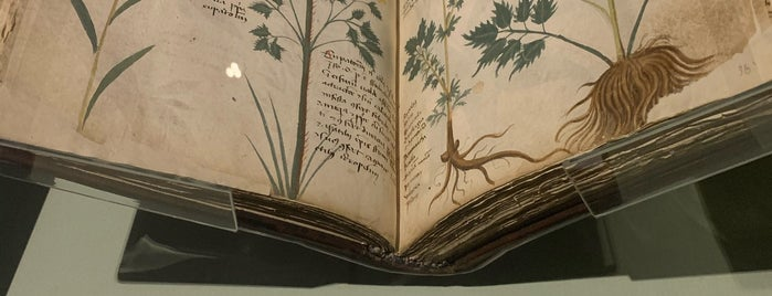 The Sir John Ritblat Gallery: Treasures of the British Library is one of Carl : понравившиеся места.