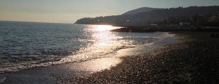 Passeggiata di Cogoleto is one of สถานที่ที่ Mik ถูกใจ.