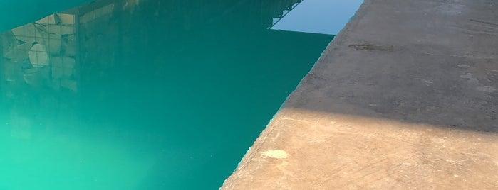 Agua De Vid is one of Tempat yang Disukai Rossana.