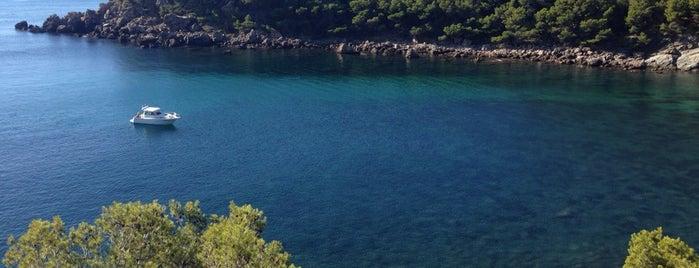 Cala Murtra is one of Playas de España: Cataluña.