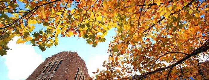 Central Michigan University is one of Lugares favoritos de Kyle.