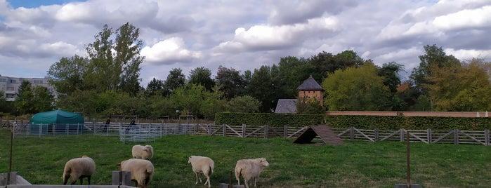 Englischer Garten is one of Olga : понравившиеся места.