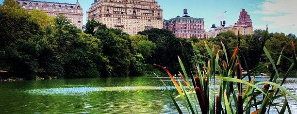 The Lake is one of Tourist attractions NYC.