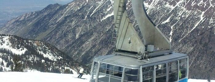 Hidden Peak, Snowbird is one of Ski.