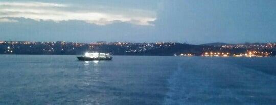 Eskihisar - Topçular Feribotu is one of İstanbul - İzmir Rotası.