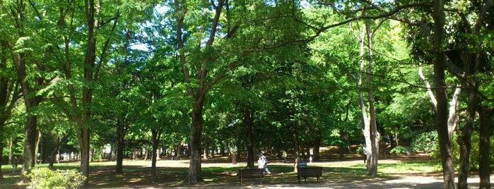 Roka Koshun-en Gardens is one of せたがや百景 100 famous views of Setagaya.
