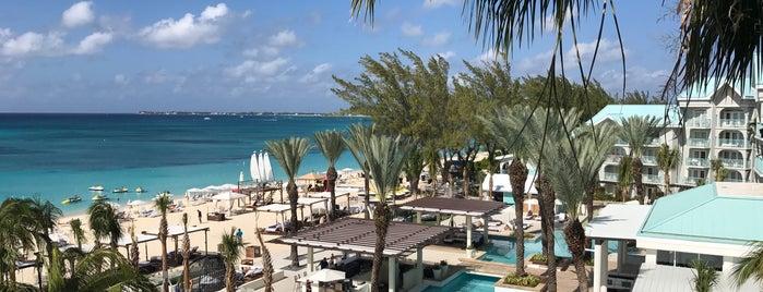 The Westin Grand Cayman Seven Mile Beach Resort & Spa is one of สถานที่ที่ M ถูกใจ.