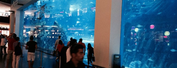 Dubai Aquarium is one of Tempat yang Disukai Edward.