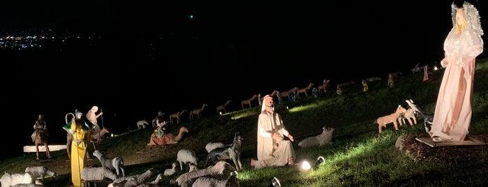 Shadi Christmas Display is one of Kouros'un Kaydettiği Mekanlar.