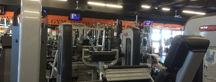 Armbrust Pro Gym is one of Chellyさんのお気に入りスポット.