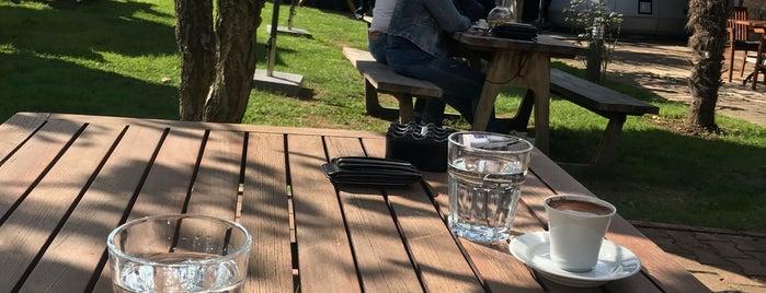 Meet Lab Coffee is one of Orte, die Serap gefallen.
