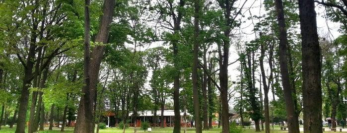 Gradski park is one of Posti che sono piaciuti a Gülşah.