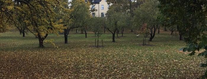 Kristinebergs slottspark is one of Sophia.
