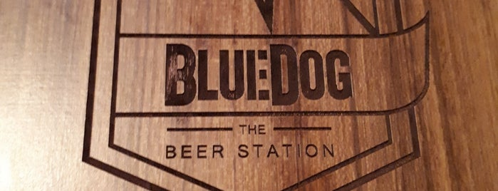 BlueDog is one of Bares de BsAs.