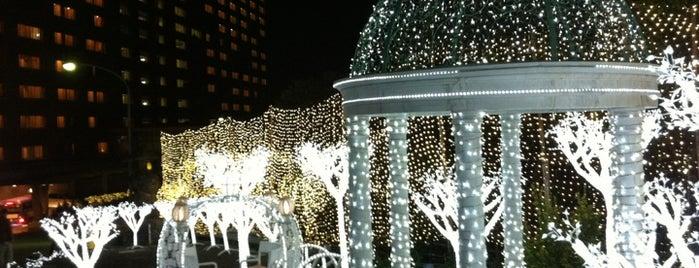 Suginoi Hotel is one of Locais curtidos por Shigeo.