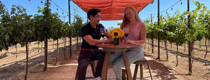 Lechuza Vineyard is one of Valle de Guadalupe / Ensenada Road Trip.