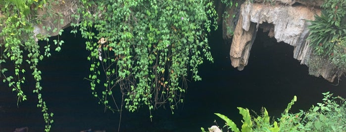 Cenote Kankirixche is one of Tulum.