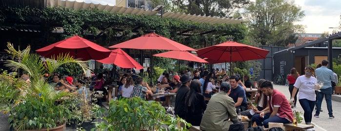 Jardin Juárez is one of Beth's CDMX Top 50 🥑.