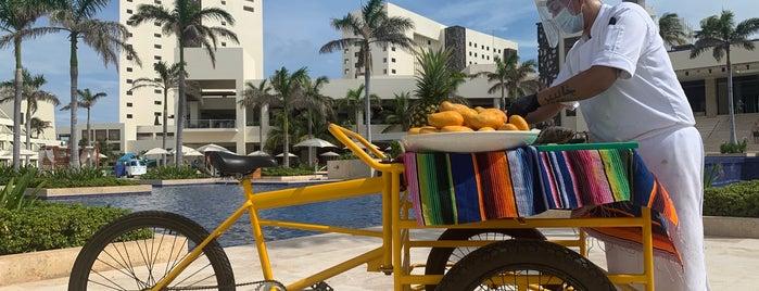 Hyatt Ziva Cancun is one of Consta 님이 좋아한 장소.