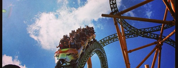 Busch Gardens Tampa Bay is one of All-time favorites in United States (Part 2).