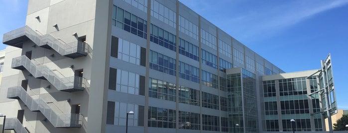 San Francisco State University J. Paul Leonard Library is one of Remote Work / Study Spots (San Francisco).