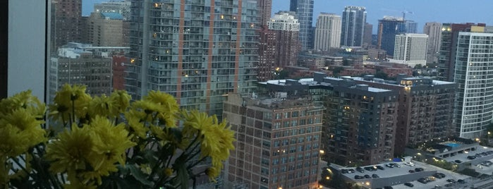 South Chicago is one of Orte, die David gefallen.