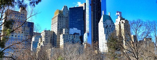 Central Park is one of #myhints4NewYorkCity.