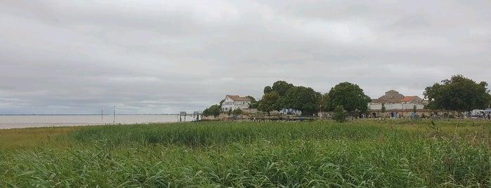 Talmont-sur-Gironde is one of Les plus beaux villages de France.
