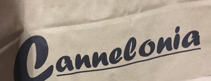 Cannelonia is one of girona I.