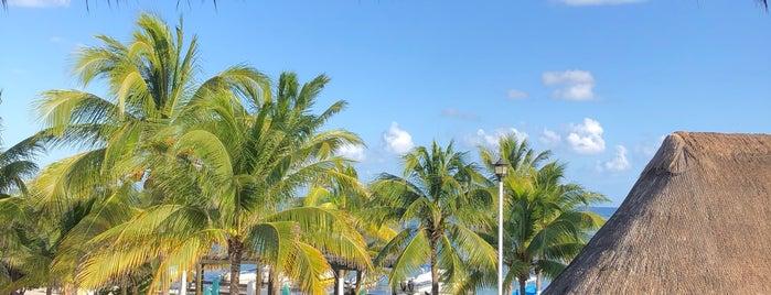 Punta Corcho is one of Martina : понравившиеся места.