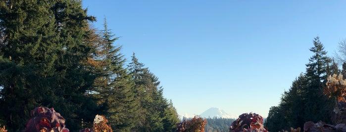 UW: Rainier Vista is one of Lugares favoritos de Breanna.