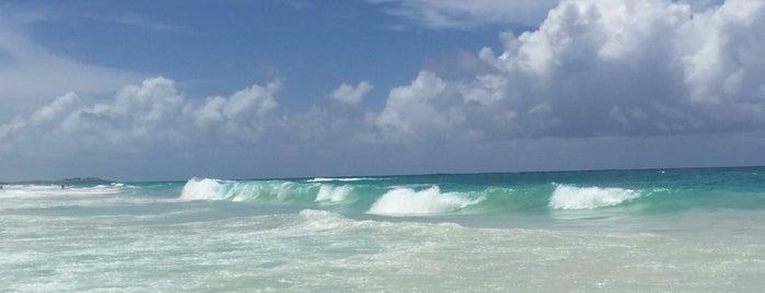 Occidental Caribe is one of Yulia 🐾 : понравившиеся места.