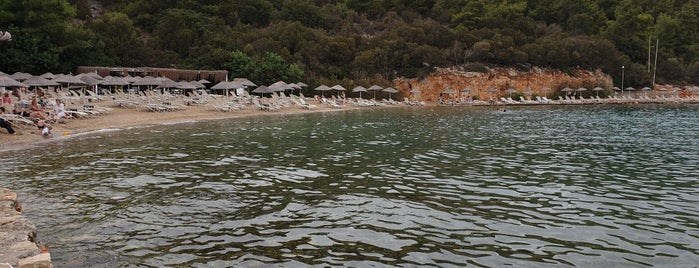 Bodrum Park Resort is one of สถานที่ที่ Pınar ถูกใจ.