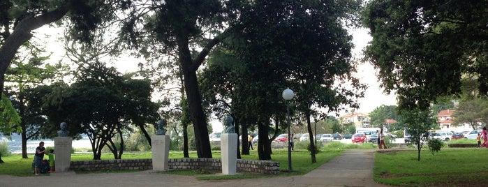 Gradski park | Park slobode is one of visit again.