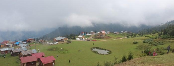 Badara Yaylası is one of Tempat yang Disukai Burcu.