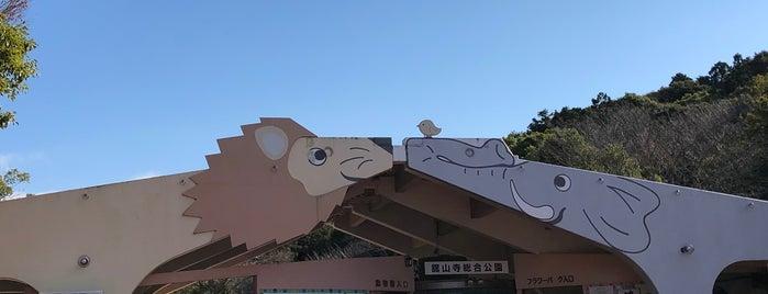 浜松市動物園 is one of สถานที่ที่ Masahiro ถูกใจ.