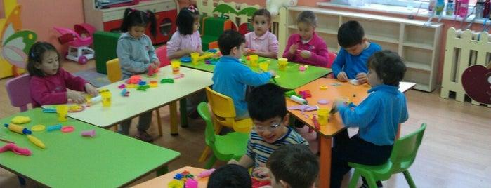 Zihnipaşa İlköğretim Okulu is one of Esraさんのお気に入りスポット.