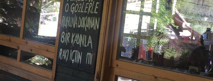 Abant Yeşil Ev / Rüya Ev is one of Gery Medel'in Beğendiği Mekanlar.