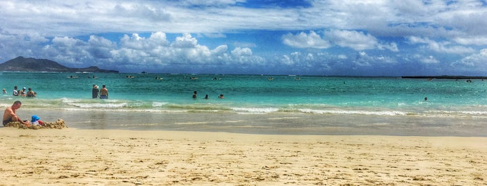 Kailua Beach Park is one of สถานที่ที่ Dennis ถูกใจ.
