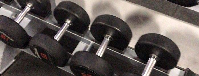 Mecca of Bodybuilding is one of Czimtom : понравившиеся места.