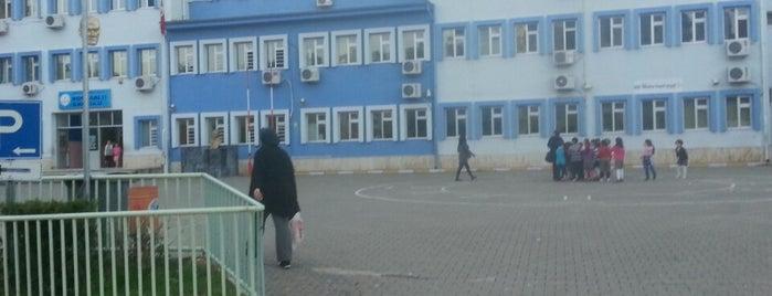 Konyaaltı İlkoğretim Okulu is one of Lugares favoritos de Adalet.