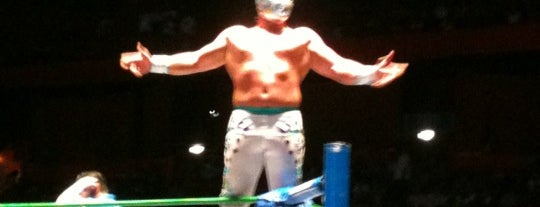 Arena México is one of Locais curtidos por Paco.