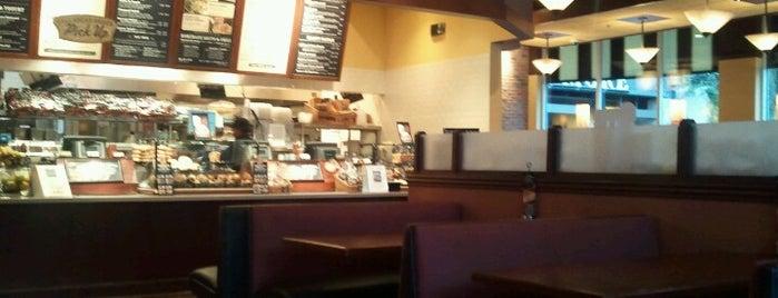 Corner Bakery Cafe is one of Lugares favoritos de Laura.