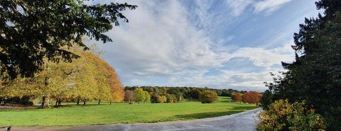 Beckenham Place Park is one of Raymond'un Beğendiği Mekanlar.