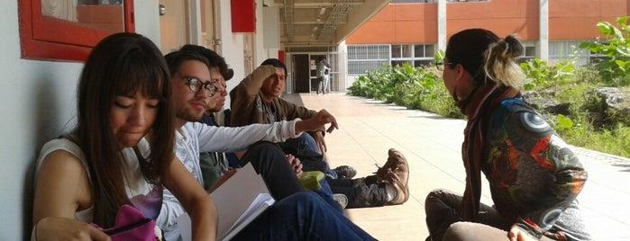 Centro Universitario de Estudios Cinematograficos CUEC UNAM is one of Posti che sono piaciuti a Priscilla.